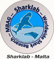 Sharklab Malta